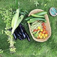 オーナー自ら畑を耕して野菜を作ってます♪