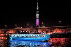 東京夜景 屋形船 平井の特集写真