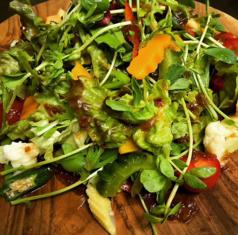 料理メニュー写真有機野菜のサラダ