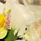 羽島漁港本店のおすすめ料理2