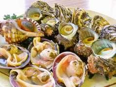 お食事処太平洋の特集写真