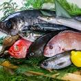 美味しい魚をぜひご賞味ください!