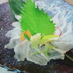 大衆割烹ボスゴリラのおすすめ料理1