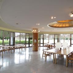 加古川食堂の雰囲気1