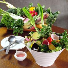 ワイン厨房Daimasuの特集写真