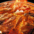 料理メニュー写真【看板料理】鶏セセリ (赤)