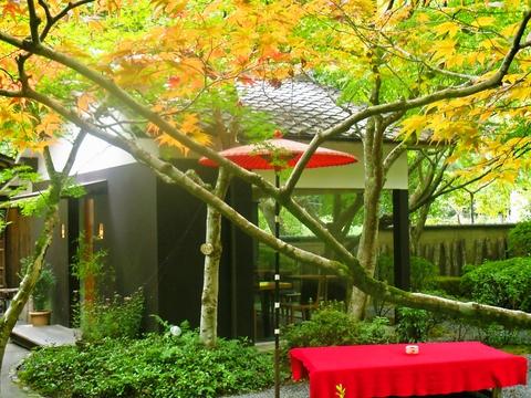 四季折々の景色が楽しめる、大人の隠れ家的庭園喫茶。嵐山でケーキを食べるならココ!