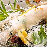 大漁奉市のおすすめ料理2