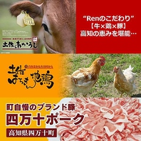 【高知のめぐみ】鶏・牛・豚・海鮮の素材にこだわり