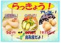 料理メニュー写真らっきょ三昧 甘酢漬け/サラダ/串カツ