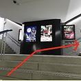 『M14』出口登り階段出口を向かって右側へ登ってください。