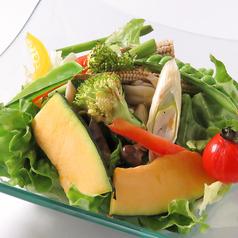 季節のグリル野菜サラダ