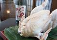 450日かけて丁寧に育て上げた知覧鶏を使用しております。さばきたての知覧鶏は絶品の味を持ち、鮮度抜群です。クセになるかみごたえと旨みはヤミツキになること間違いなし。