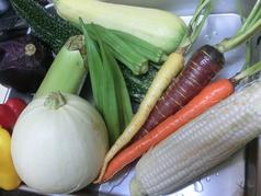 届きたて元気な有機野菜のサラダ シェフSP