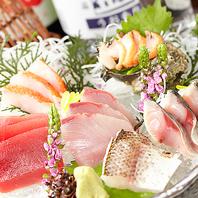 自慢の魚盛り!漁港直送の海鮮物をお召し上がりください