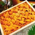 料理メニュー写真北海道産 雲丹