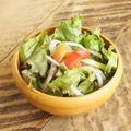 料理メニュー写真彩り野菜のグリーンサラダ