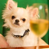 ペット同伴でデートや記念日、誕生日など様々なシーンに