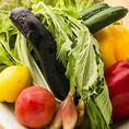 【産地直送の厳選食材を使用】契約農家直送のお野菜は新鮮で栄養たっぷり。無農薬農業で育ったお野菜は日の光をじっくり浴びて、農家の方々に真心込めて育てられました。そのまま食べても苦みが少なく、野菜の甘みが感じることができます。女性に人気のヘルシーメニューも充実しております!