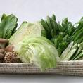 野菜の種類も豊富♪