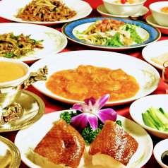 中国料理 白鳳 渋谷店の特集写真
