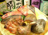 寿司 煮魚 かめ吉 八王子の詳細