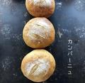 料理メニュー写真≪天然酵母使用≫カンパーニュ