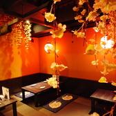 京桜 きょうざくらの雰囲気3
