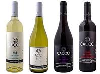 ワインやカクテル等の種類も豊富