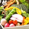 料理メニュー写真八王子野菜の採り直サラダ