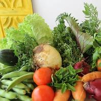 【地産地消】契約農家の採れたて野菜をふんだんに♪
