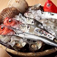築地直送の鮮魚をお楽しみ下さい
