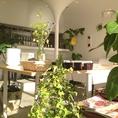 植物満載の店内