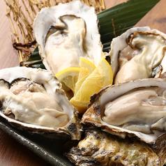仙鳳趾産 殻付き生牡蠣