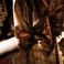 特別個室「ハルのチセ」には、本物のアイヌ保存食「サッチェプ」もご覧いただけます。