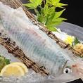 数量限定の活イカも1290円~1990円(時価)で!!コリコリの食感をどうぞ。