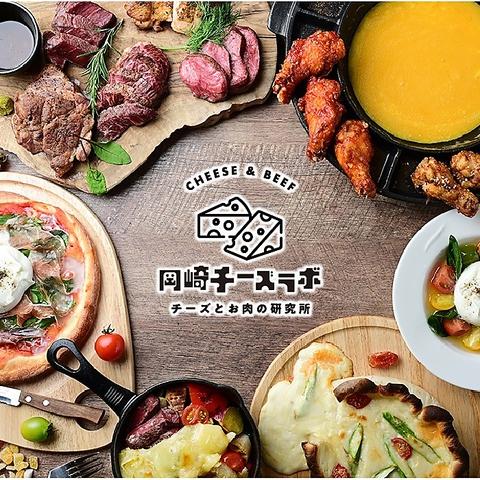 チーズとお肉の研究所 岡崎チーズラボ 東岡崎駅前店