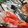 大衆魚太酒場のおすすめポイント1