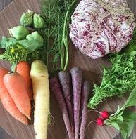 農家さんから仕入れる旬の野菜は新鮮なものばかり