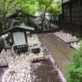 豪徳寺境内の招福観音にある招き猫にびっくり!!豪徳寺を訪れた時には是非、お越しください。