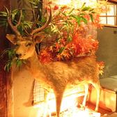 山小屋個室居酒屋 SUMIKA すみか 心斎橋の雰囲気3
