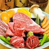ホルモン家 山ちゃんのおすすめ料理3