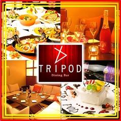 トライポッド Tripodの写真