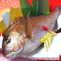 主役のおもてなしに…10名以上で祝い鯛プレゼント