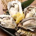 北海道仙鳳趾より直送【殻つき生牡蠣】は1個130円の原価価格でご提供!数に限りがございますので、売り切れの場合はご容赦ください。