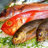 厳選仕入れした鮮魚使用!涎も滴る創作和食の数々♪
