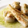 料理メニュー写真能登天然フグとスペイン産ホワイトアスパラのサルサ・ヴェルデ