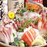 鮮魚と地酒をご堪能!誕生日・記念日などサービスも充実