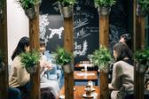 マスターズカフェ MASTARS CAFE 薬院店の雰囲気3