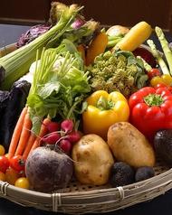 肉バルなのに野菜?!野菜ソムリエ厳選野菜が旨い